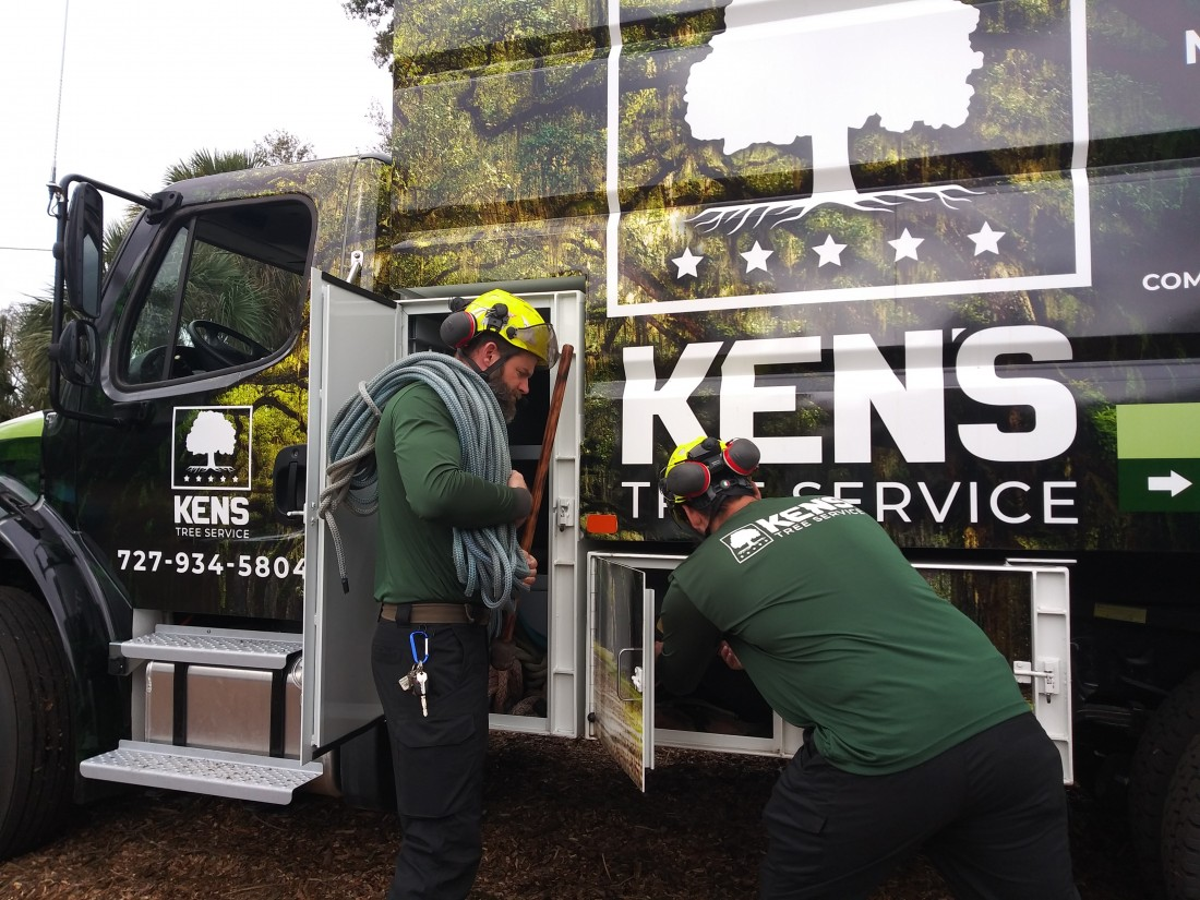 Tree Removal and Trimming: Tarpon Springs, FL | Ken's Tree Service - IMG_20190130_101655